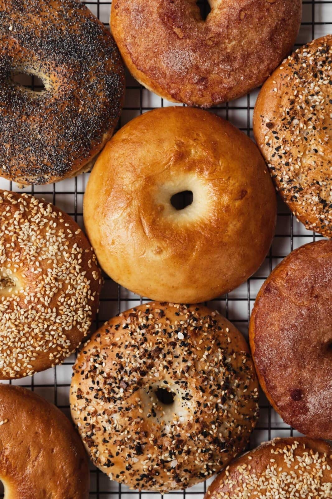homemade bagels with different seasning