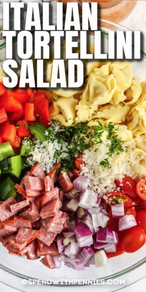 Hozzávalók olasz Tortellini saláta készítéséhez egy tálban, címmel