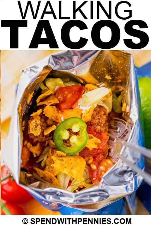 Séta Tacos egy táskában, írással