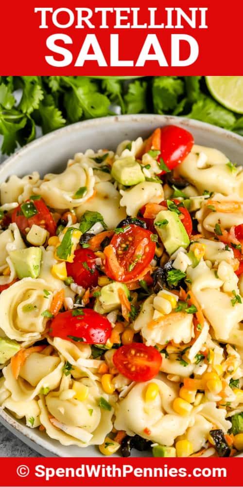 Tortellini saláta fehér tálban címmel
