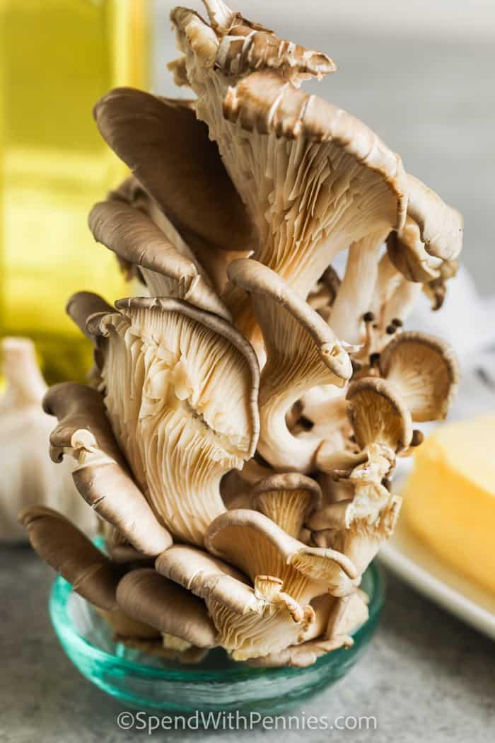 gombát készíteni fokhagymás vajas osztrigagomba